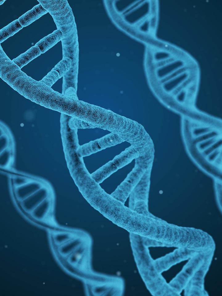 Golf e DNA